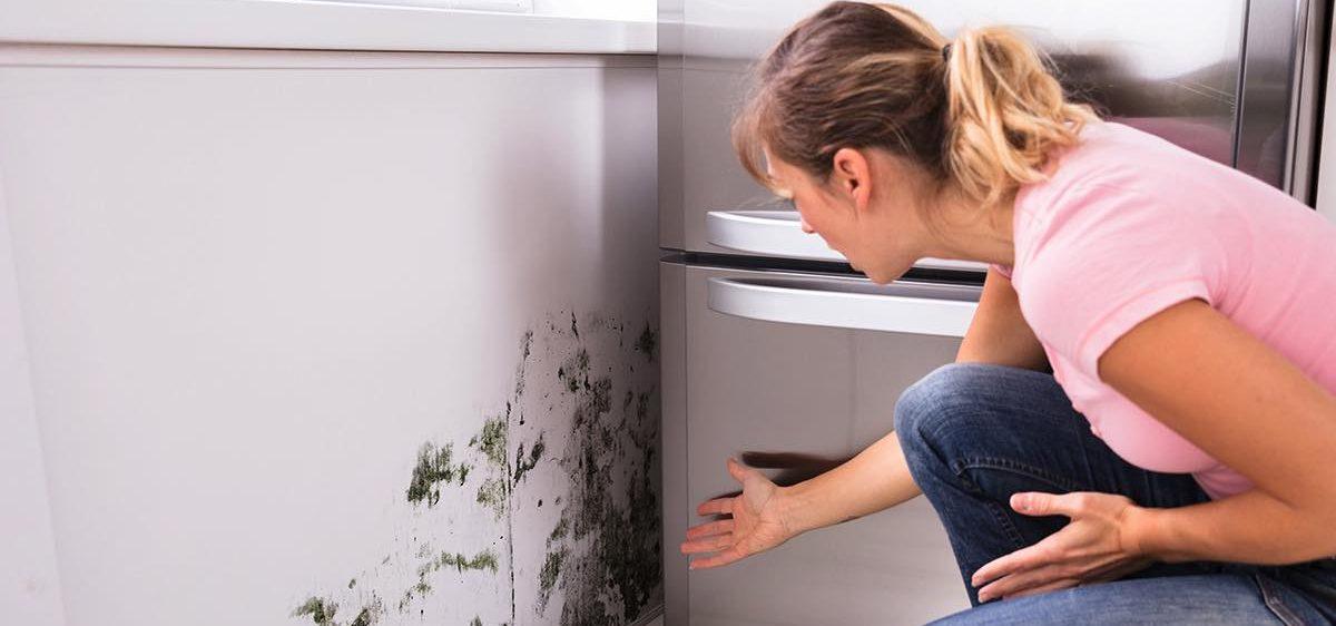 umidità muffa sui muri